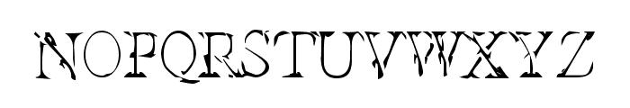 Interim SmallCaps Font LOWERCASE