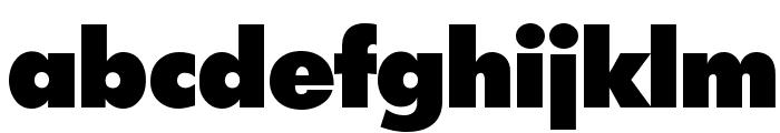 Intrepid ExtraBold Font LOWERCASE