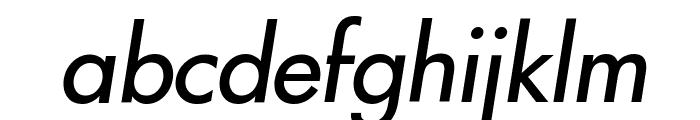 Intrepid Italic Font LOWERCASE