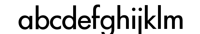 Intrepid Regular Font LOWERCASE