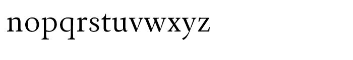 Ines Light Font LOWERCASE