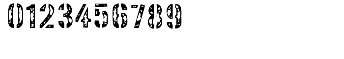 Interplanetary Crap Regular Font OTHER CHARS