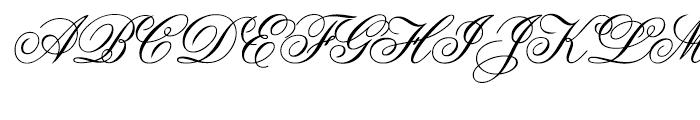intellecta Script Commercial Font UPPERCASE