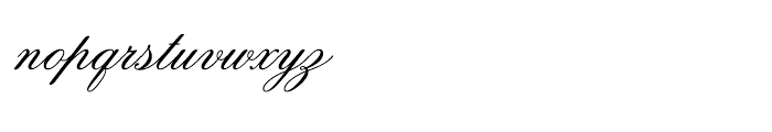 intellecta Script Commercial Font LOWERCASE
