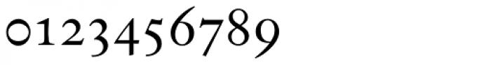 Indigo D Regular Oldstyle Figures Font OTHER CHARS