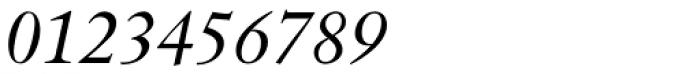Indigo P Italic Font OTHER CHARS