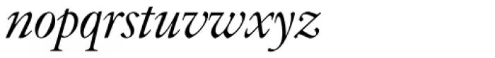 Indigo P Italic Font LOWERCASE