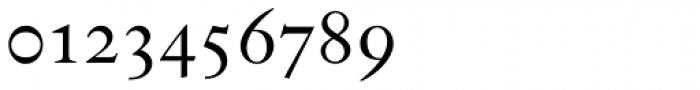 Indigo P Regular Oldstyle Figures Font OTHER CHARS