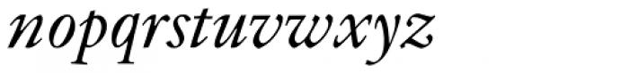 Indigo T Italic Oldstyle Figures Font LOWERCASE