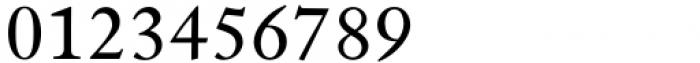 Indigo T Regular Fractions Font OTHER CHARS