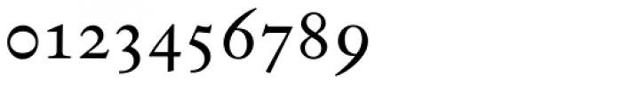 Indigo T Regular Oldstyle Figures Font OTHER CHARS