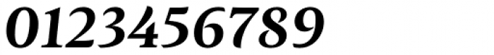 Ines Bold Italic Font OTHER CHARS