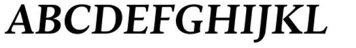 Ines Bold Italic Font UPPERCASE