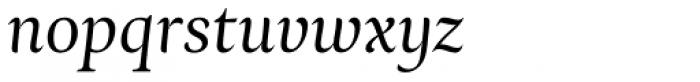 Ines Light Italic Font LOWERCASE