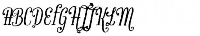 Infusion Roman Font UPPERCASE