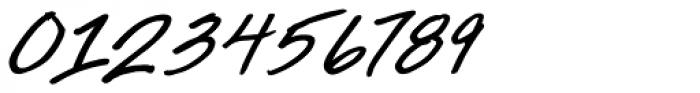 Ingrid Font Bold Italic Font OTHER CHARS