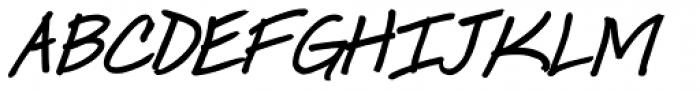 Ingrid Font Bold Italic Font UPPERCASE