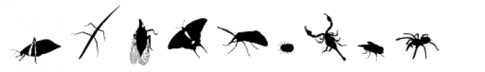 Insects Font OTHER CHARS