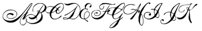 Intellecta Mixed Script Font UPPERCASE