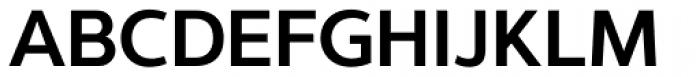 Interval Sans Pro SemiBold Font UPPERCASE