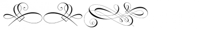 Invitation Script Ornaments Font UPPERCASE