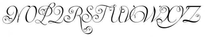 Invitation Script Font UPPERCASE