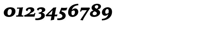 Iowan Old Style BT Black Italic Alternate Font OTHER CHARS