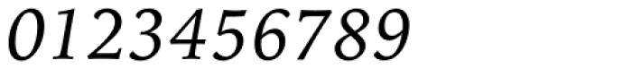 Iowan Old Style Pro Italic Font OTHER CHARS