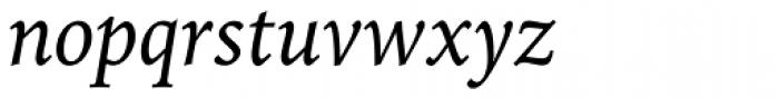 Iowan Old Style Pro Italic Font LOWERCASE