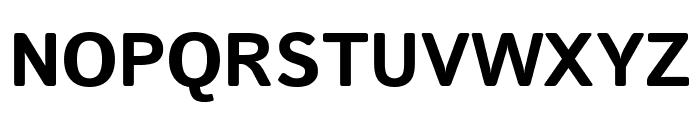 Istok Bold Font UPPERCASE