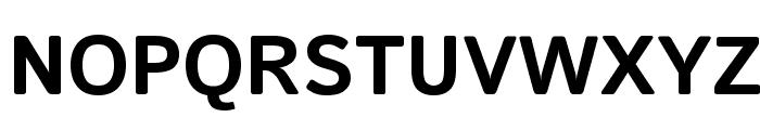 Istok Web Bold Font UPPERCASE