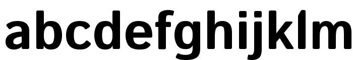Istok Web Bold Font LOWERCASE