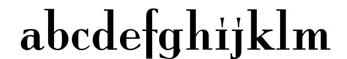 ItingOpti-Regular Font LOWERCASE