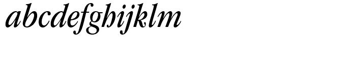 ITC Garamond Book Condensed Italic Font LOWERCASE