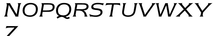 ITC Newtext Book Italic Font UPPERCASE