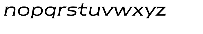 ITC Newtext Book Italic Font LOWERCASE