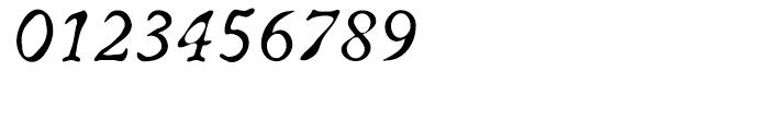 ITC Oldbook Italic Font OTHER CHARS