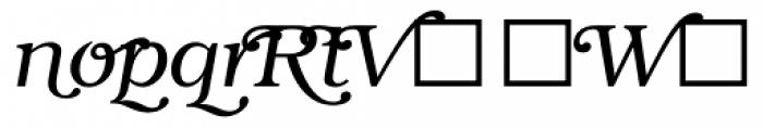 ITC Bookman Swash Light Italic Font LOWERCASE