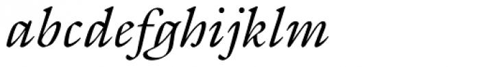 ITC Galliard Pro Italic Font LOWERCASE