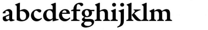 ITC Galliard eText Std Bold Font LOWERCASE