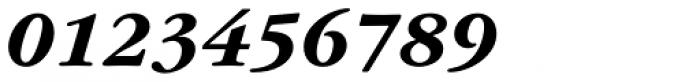 ITC Garamond Std Bold Italic Font OTHER CHARS