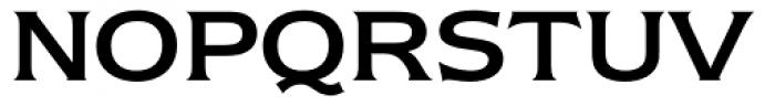 ITC Newtext Font UPPERCASE