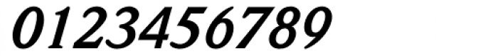 ITC Weidemann Bold Italic Font OTHER CHARS