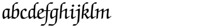 ITC Zapf Chancery Pro Roman Font LOWERCASE