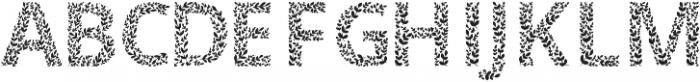 Ivory Black otf (900) Font LOWERCASE