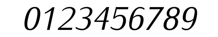 Iwona-Italic Font OTHER CHARS