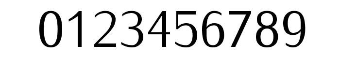 Iwona-Regular Font OTHER CHARS