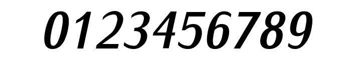 IwonaCond-BoldItalic Font OTHER CHARS