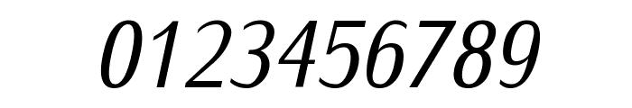 IwonaCond-Italic Font OTHER CHARS