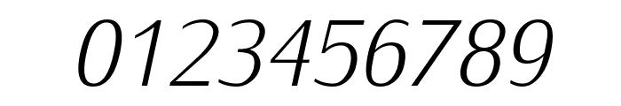 IwonaLight-Italic Font OTHER CHARS